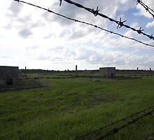 Poland - Birkenau - former chambers by Ren Provo