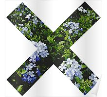 X fleur Poster