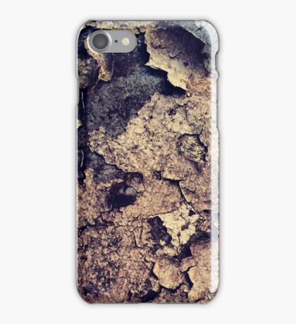 The beauty of decay iPhone Case/Skin