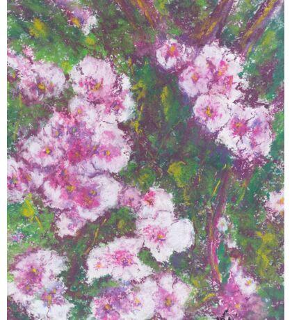 Pink Cascade (pastel) Sticker