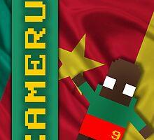 World Cup 2014: Camerun by pixsoccer