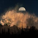 4234 by peter holme III