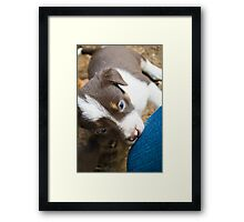 What is this thing you call a knee? Framed Print