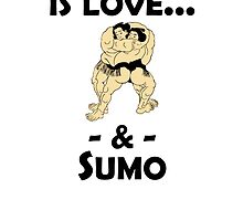 Love And Sumo by kwg2200