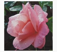 Dreamy Rose One Piece - Long Sleeve
