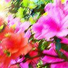 Azalea Abstract  by Terri Chandler