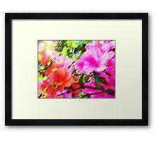 Azalea Abstract  Framed Print