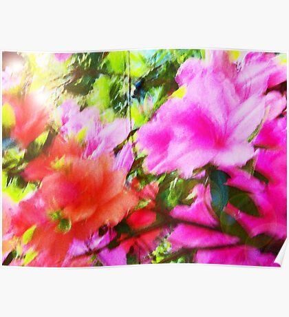 Azalea Abstract  Poster