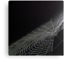 Spidery Web Canvas Print