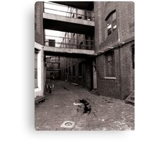 Black and White Alley Canvas Print