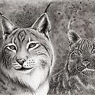 Ever Watchful Eurasian Lynx by Mariya Olshevska