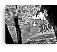 Sunlit Tree and Fountain, Franklin NJ USA Canvas Print