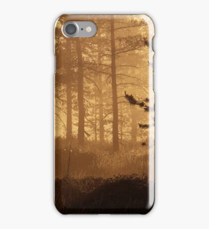 11.6.2016: Pine Trees in Morning Mist iPhone Case/Skin