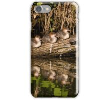 family common merganser  II - river Olza, Czech Republik iPhone Case/Skin
