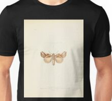 Aid to the identification of insects Charles Owen Waterhouse 1890 V1 V2 116 Gonophora Armata Khasia Hills Genophora Armata Kasia Hills Unisex T-Shirt