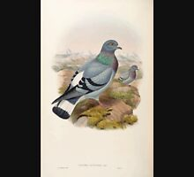 Birds of Asia John Gould 1883 V1 V7 437 Columba Rupestris Unisex T-Shirt