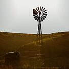Windmill Water Pump Texas by Christine Till  @    CT-Graphics