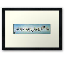 Finches On Parade Framed Print