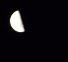 Half moon in night sky Sticker