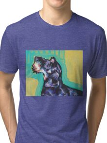 Dachshund Dog Bright colorful pop dog art Tri-blend T-Shirt