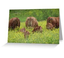 Buttercup Behinds Greeting Card