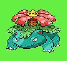 Venusaur by GreenTheRival