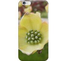 West Virginian Flower iPhone Case/Skin