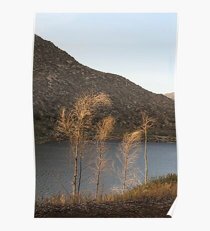 El Capitan Reservoir, San Diego County, California, 11 Poster