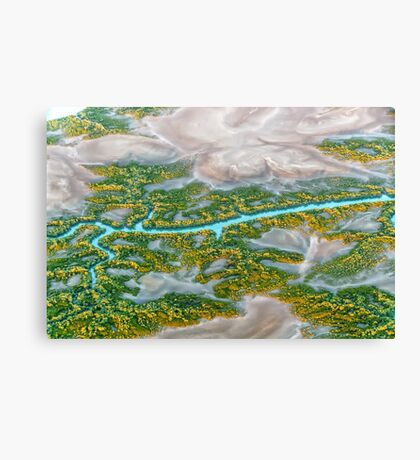 Earth Abstract Canvas Print