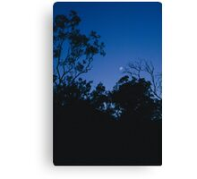 Night is coming. Canvas Print