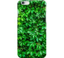 Lush Green Hedge Background iPhone Case/Skin