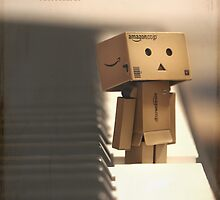 The key of Danbo by OhSoBoHo