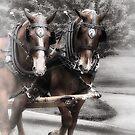 Horse Buddies  by ArtbyDigman