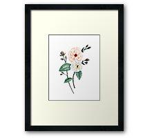 Rose I, Peach Cream on White Framed Print