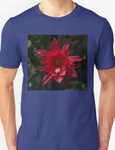 One Very Red Orchid Cactus Bloom - Delicate, Luminous and Elegant Unisex T-Shirt