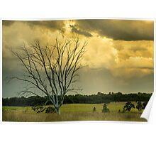 Kindling Wood Poster