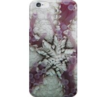 Belly Up iPhone Case/Skin
