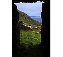 View From A Lighthouse Ruin  Photographic Print
