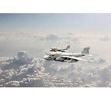 Prowlers Photographic Print