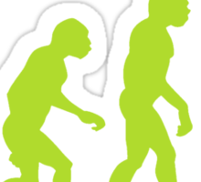 Android Evolution Sticker