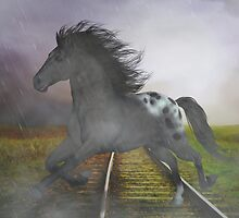 Horse in the Rain by Gatterwe