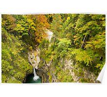 Neuschwanstein Waterfall Poster