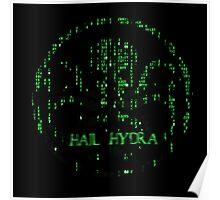 Hail Hydra! Poster