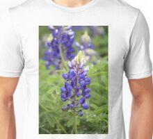 Bluebonnet 2 Unisex T-Shirt