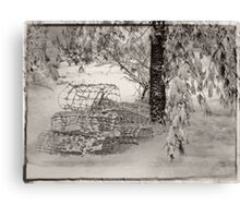 A Snow Scene Canvas Print