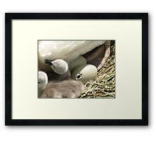 Mama...One MORE... Framed Print