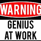 Warning - Genius at Work by Jason Scott