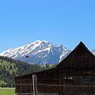 The John Moulton Barn and Teton Range by Michelle Callahan