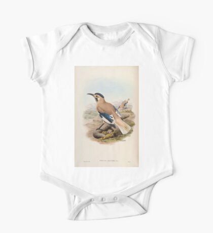 Birds of Asia John Gould 1883 V1 V7 360 Podoces Biddulphi One Piece - Short Sleeve
