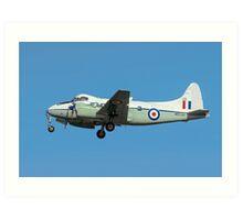 De Havilland DH104 Devon C.2 WB534/DB Art Print
